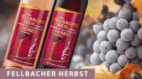 6er Fellbacher Herbst